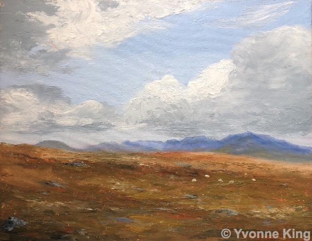 Bogland With Sheep