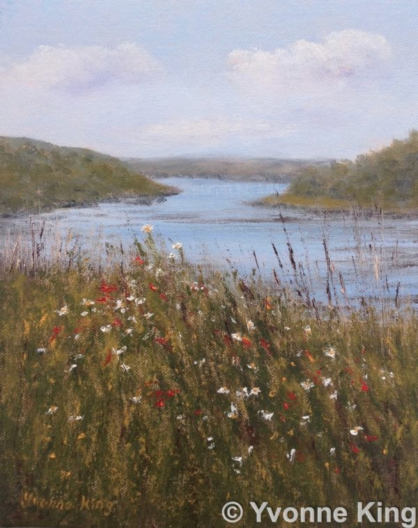 Wildflowers at Clifden Bay